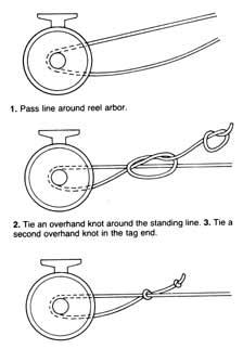 arborknot