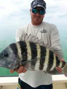 sheepshead and Billy
